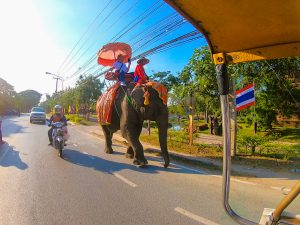 tajlandia jazda na sloniach