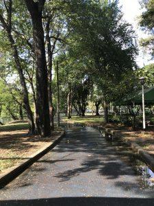 bangkok park lumphini