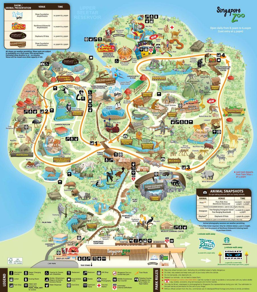 singapur najlepsze zoo na świecie