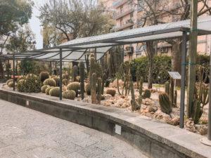 ogrody botaniczne w katanii