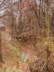 nałęczów wąwóz przy domku na drzewie