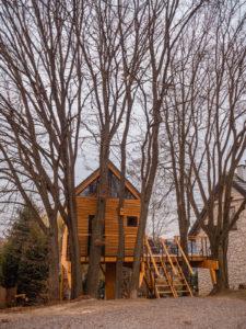 noclegi na drzewie