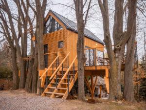 nałęczów domki na drzewach